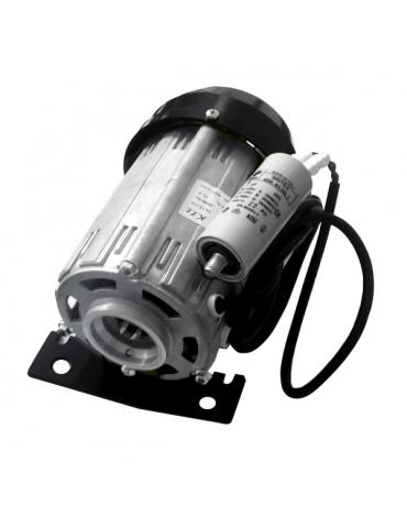 Motore elettrico per pompa paletta 200 lt/h