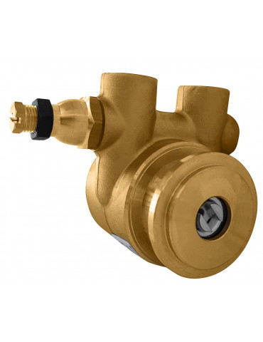 Fluid or Tech vane pump 100lt / h - reduced